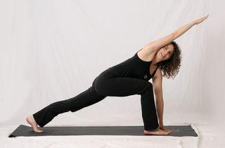 muselaura, laura erdman-luntz, muselan, musasana, museasana, yoga, hatha yoga, yoga pose, study one yoga pose a month, parivrtta parsva konasana, revolved side angle pose